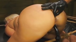 Layla Price abused by toys and banged while tied
