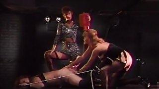 Exotic pornstars Sharon Mitchell, Teddi Austin and Tracey Adams in fabulous threesomes, mature xxx scene