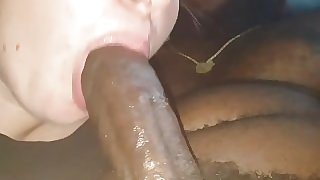 Young Lacey malburgh sucking my dick again